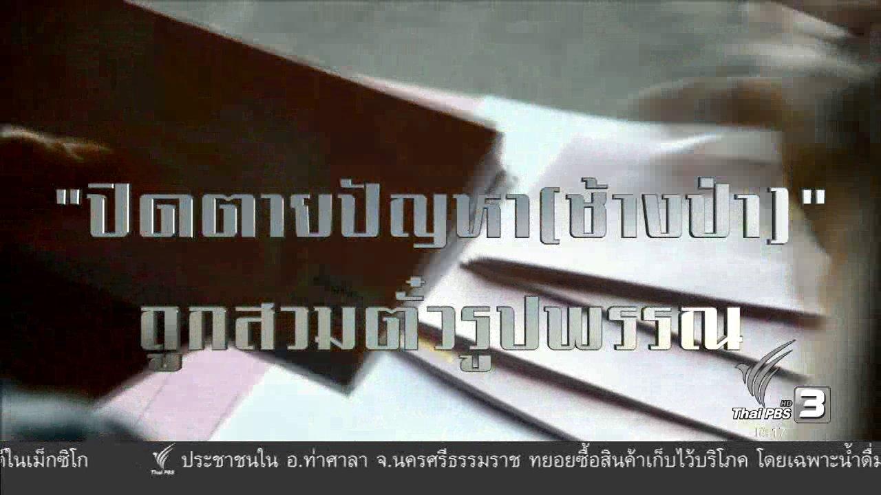 พลิกปมข่าว - ปิดตายปัญหา (ช้างป่า) ถูกสวมตั๋วรูปพรรณ