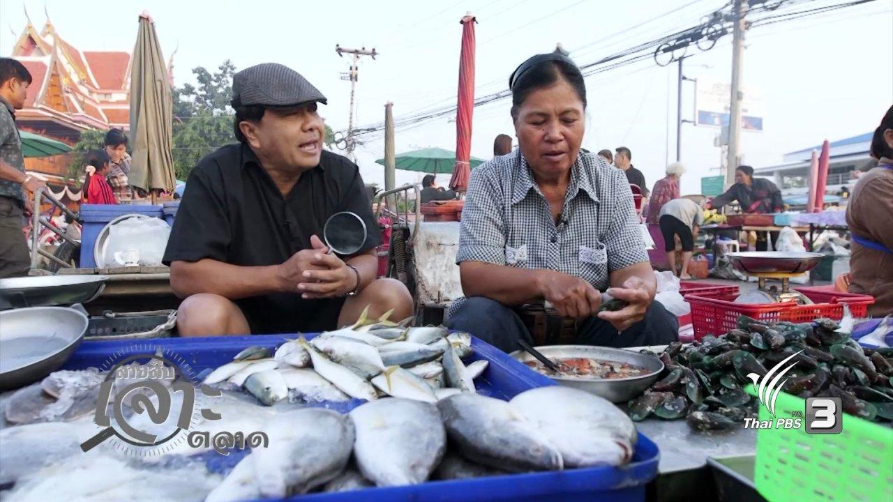 วันใหม่  ไทยพีบีเอส - สืบราคาอาหารทะเลสดๆ กันที่ตลาดบางตะบูน