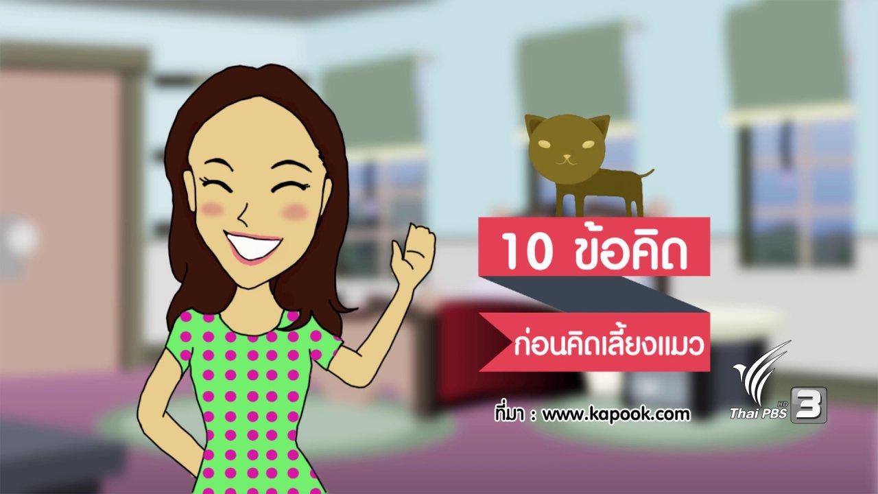 นารีกระจ่าง - กระจ่างจิต : 10 ข้อคิดก่อนคิดเลี้ยงแมว