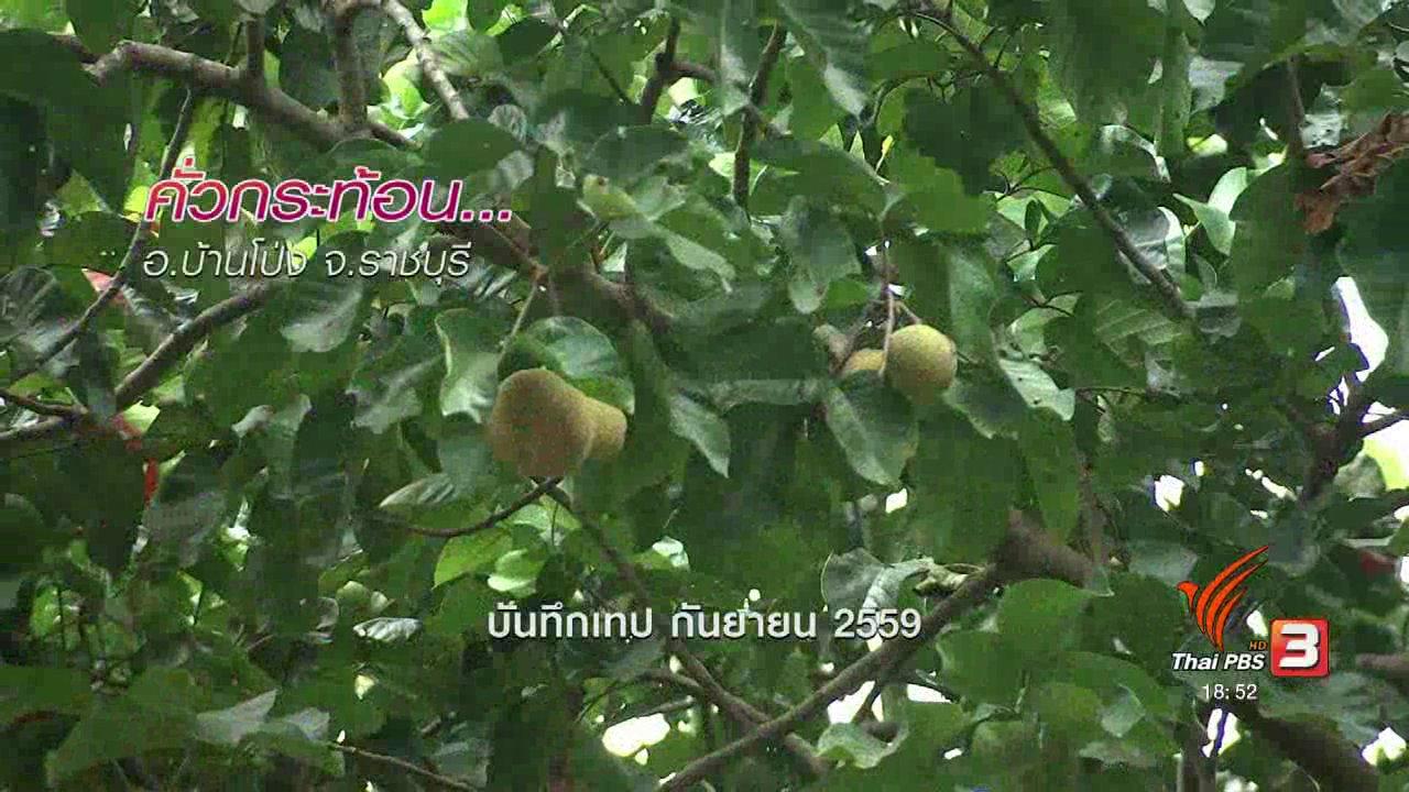 ข่าวค่ำ มิติใหม่ทั่วไทย - ตะลุยทั่วไทย : คั่วกระท้อน อ.บ้านโป่ง จ.ราชบุรี