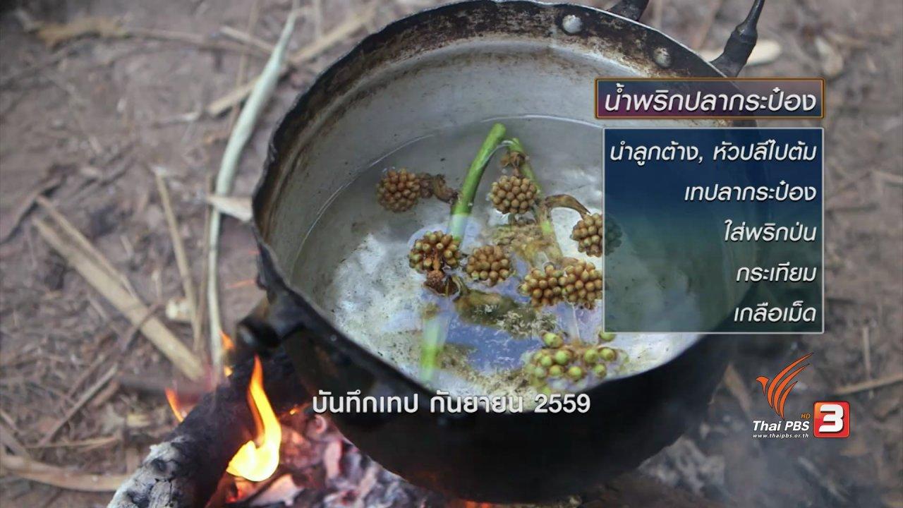 ข่าวค่ำ มิติใหม่ทั่วไทย - ตะลุยทั่วไทย : ขอป่าปกาเกอะญอ