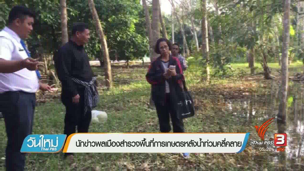 วันใหม่  ไทยพีบีเอส - นักข่าวพลเมืองสำรวจพื้นที่การเกษตรหลังน้ำท่วมคลี่คลาย