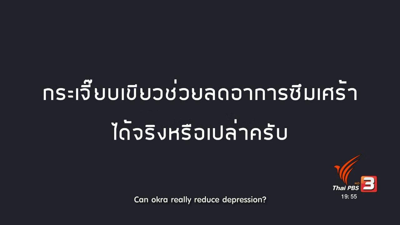 ข่าวค่ำ มิติใหม่ทั่วไทย - soเชี่ยว FAKE or FACT : กระเจี๊ยบเขียว สามารถลดอาการซึมเศร้าได้หรือไม่