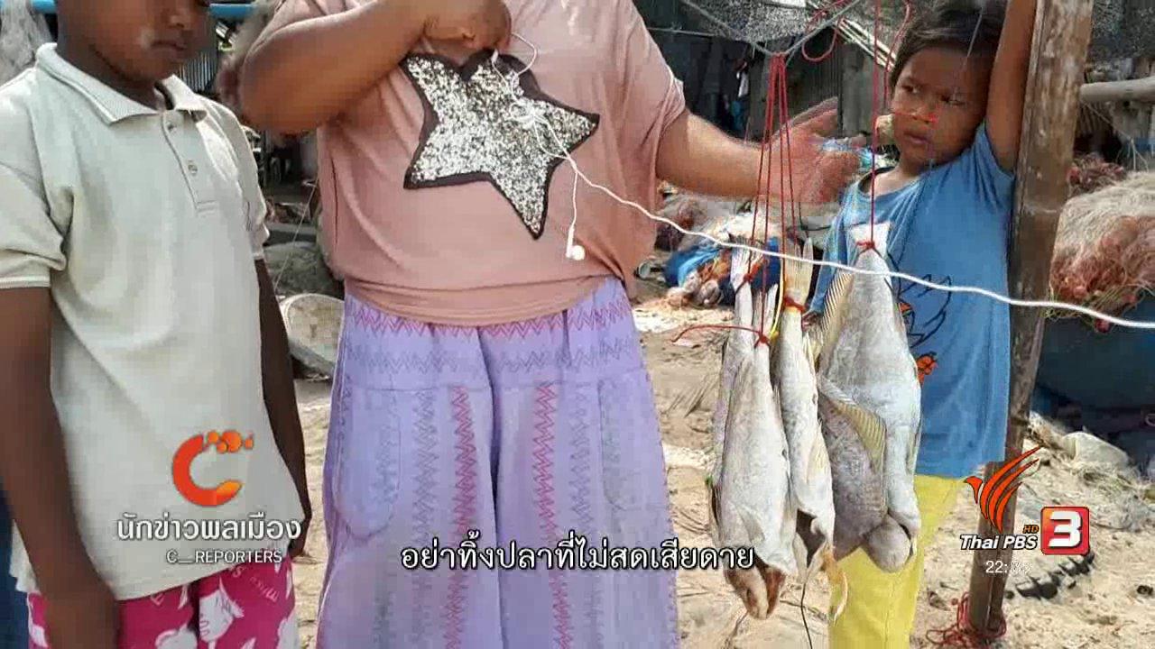 ที่นี่ Thai PBS - นักข่าวพลเมือง : ปลาฝังดินกินได้ ที่เกาะสมุย