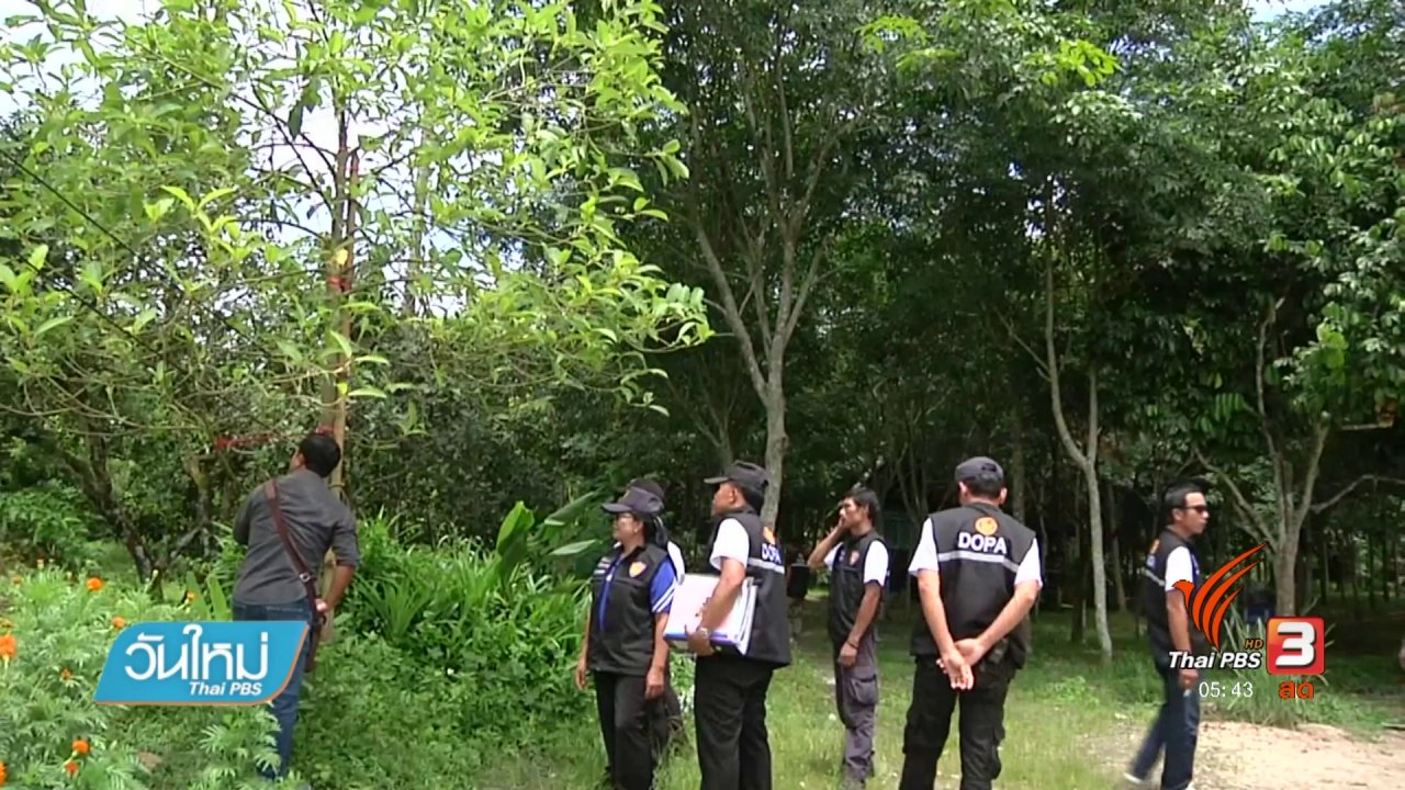 วันใหม่  ไทยพีบีเอส - ป.ป.ส. คุ้มครอง ม.ทางใต้ นำร่องวิจัยพืชกระท่อม