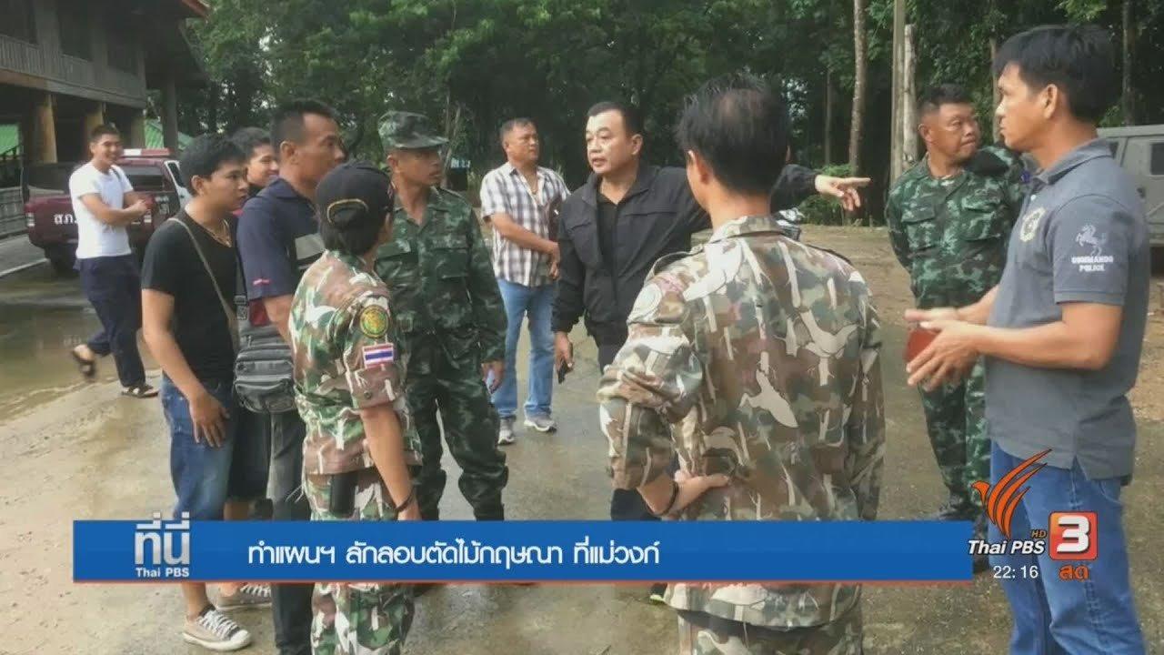 ที่นี่ Thai PBS - คดีผู้ต้องหาชาวเวียดนามลักลอบตัดไม้กฤษณา