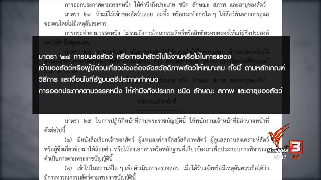 """ที่นี่ Thai PBS - เร่งหามาตรการกฎหมาย ป้องกัน """"ฆ่าหมา หวังเงินประกัน"""""""