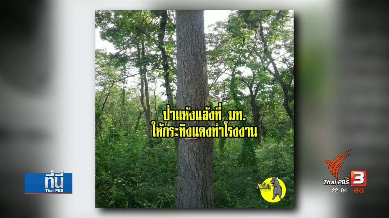 """ที่นี่ Thai PBS - : ค้าน """"พล.อ.อนุพงษ์"""" อนุมัติพื้นที่ป่าให้เอกชน"""