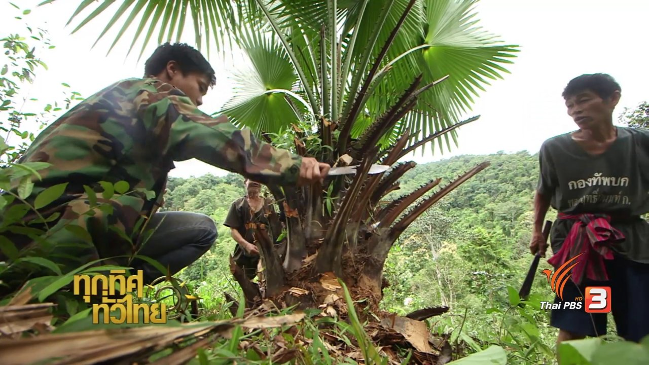 ทุกทิศทั่วไทย - วิถีทั่วไทย : อาหารพื้นบ้านจากต้นคร้อ