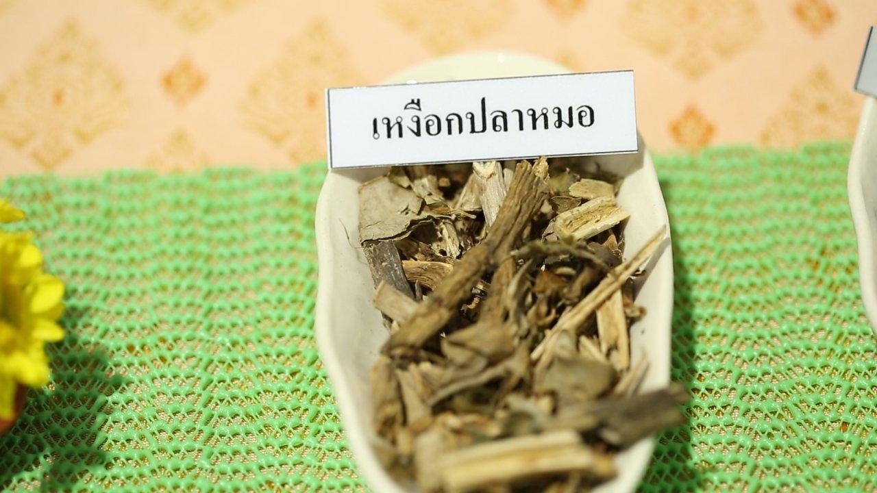 คนสู้โรค - บำบัดอาการภูมิแพ้ด้วยแพทย์แผนไทย