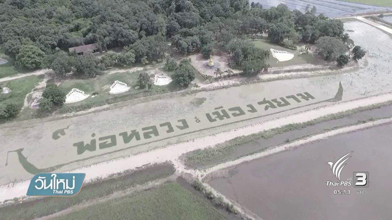 วันใหม่  ไทยพีบีเอส - ชาวบ้านปลูกผักแปรอักษรแสดงความจงรักภักดี