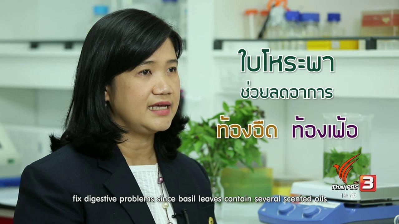 ข่าวค่ำ มิติใหม่ทั่วไทย - soเชี่ยว FAKE or FACT : การดื่มน้ำโหระพาแล้วทำให้นอนหลับจริงหรือไม่