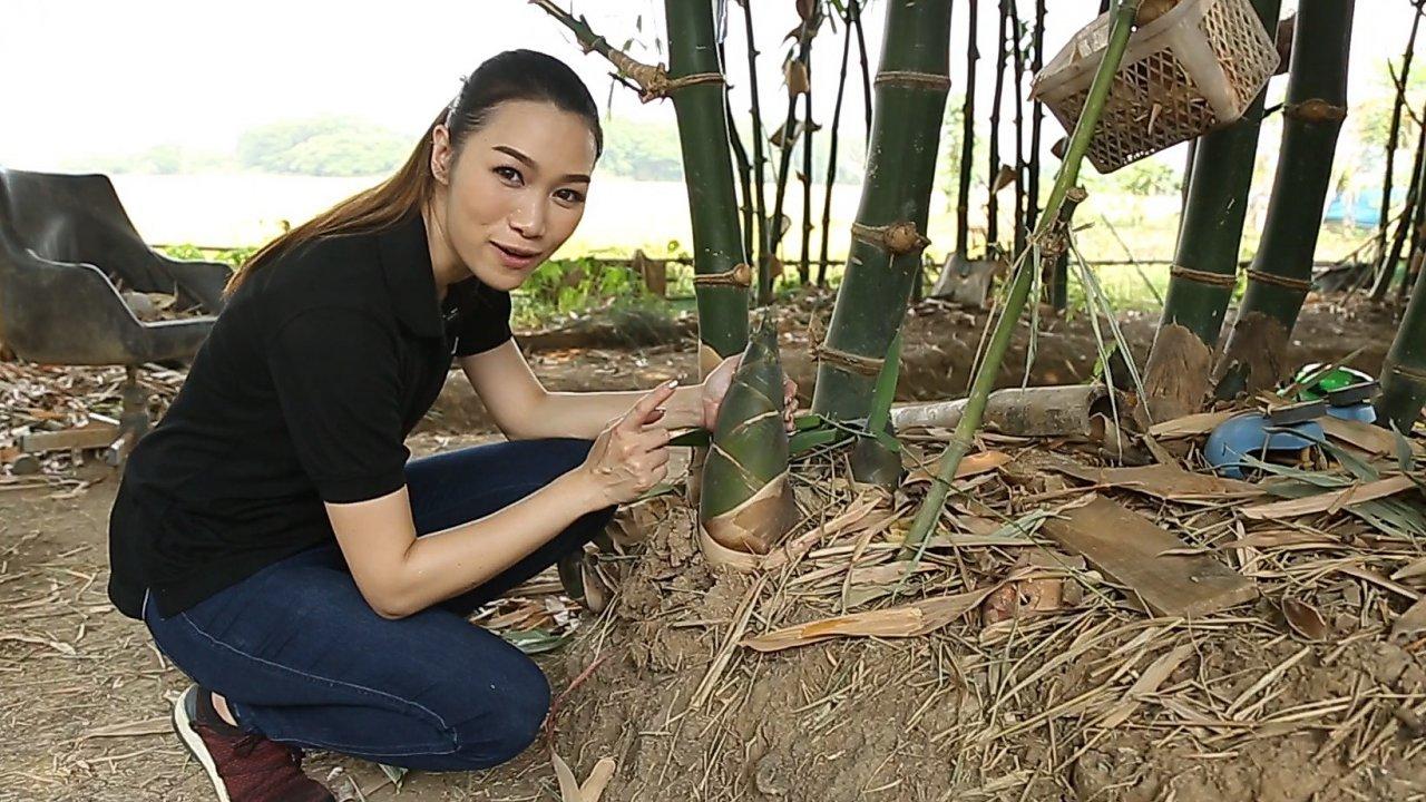 คนสู้โรค - เกษตรปลอดสารพิษ ชุมชนเกาะเกิด