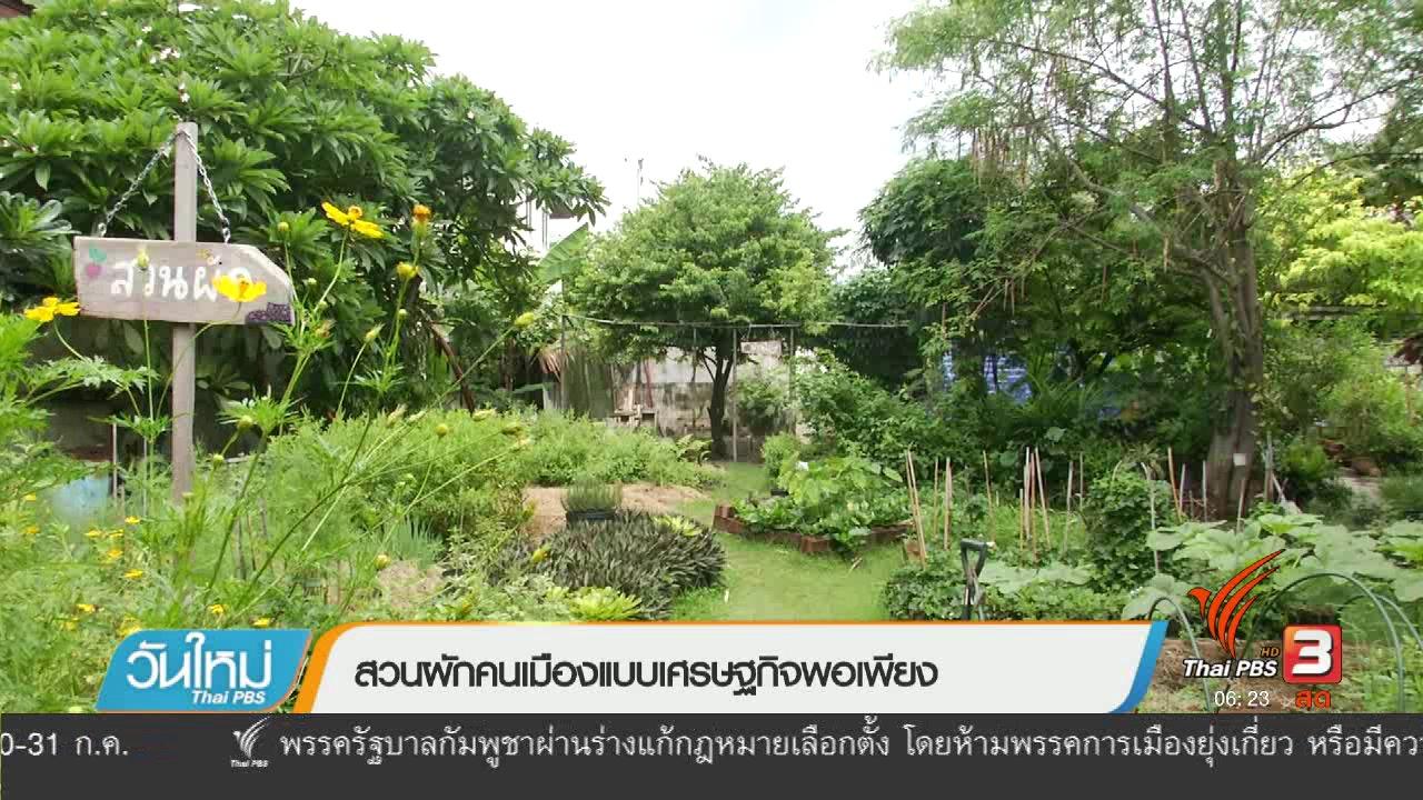 วันใหม่  ไทยพีบีเอส - สวนผักคนเมืองแบบเศรษฐกิจพอเพียง