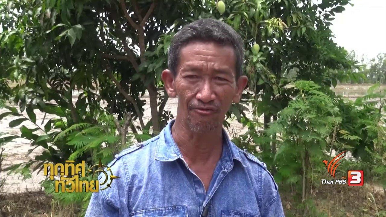 ทุกทิศทั่วไทย - อาชีพทั่วไทย : ฟาร์มมดแดง