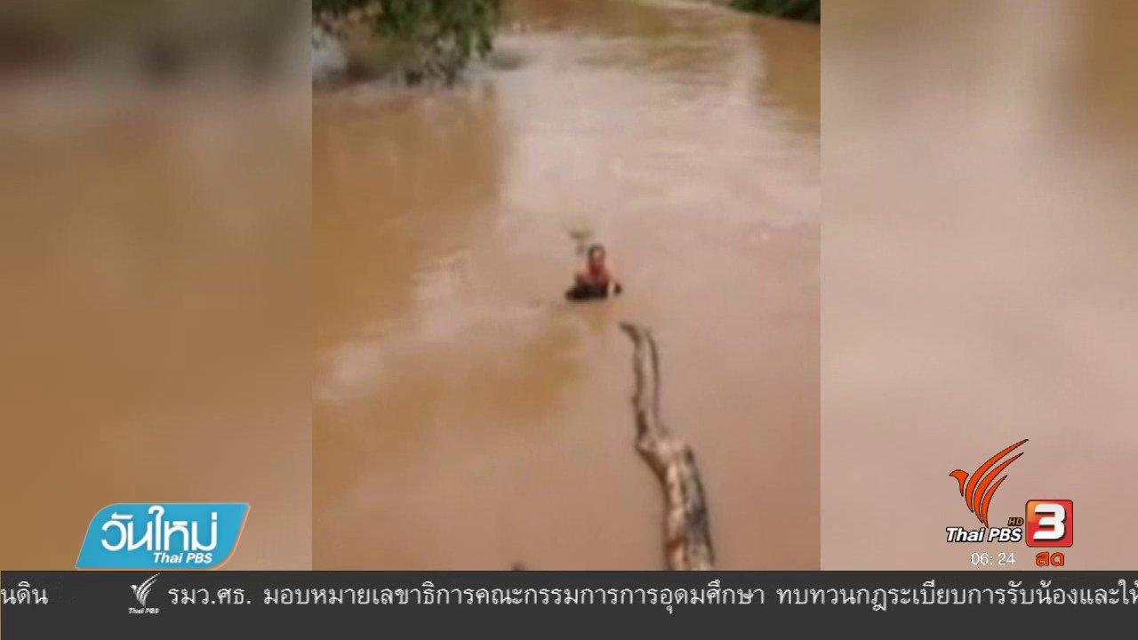 วันใหม่  ไทยพีบีเอส - ชื่นชมชายกระโดดน้ำช่วยสุนัขจมน้ำ