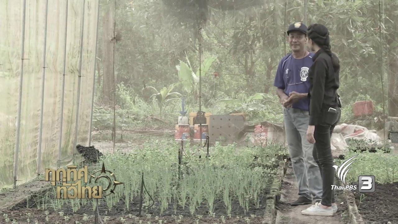 ทุกทิศทั่วไทย - จุฑามาศ พาตะลุย : น้อมนำหลักปรัชญาเศรษฐกิจพอเพียงมาปรับใช้ในการดำเนินชีวิตบนเกาะ