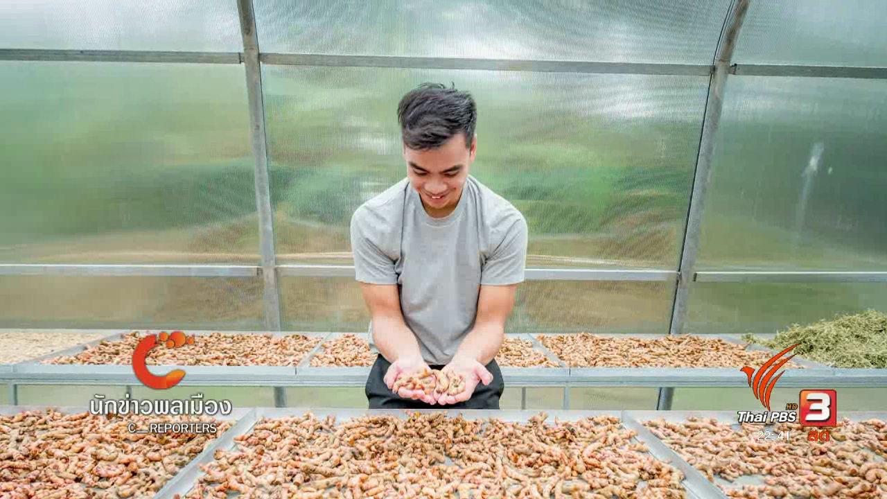 ที่นี่ Thai PBS - นักข่าวพลเมือง : เกษตรรุ่นใหม่ เดินตามรอยพ่อ