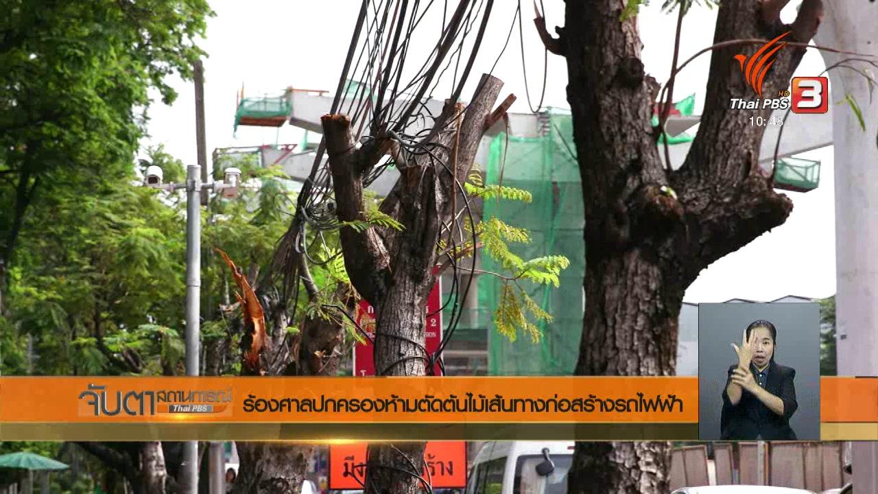จับตาสถานการณ์ - ร้องศาลปกครองห้ามตัดต้นไม้เส้นทางก่อสร้างรถไฟฟ้า