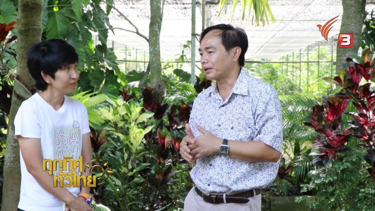 ทุกทิศทั่วไทย - ชุมชนทั่วไทย :การขยายพันธุ์กวาวเครือดำได้สำเร็จ