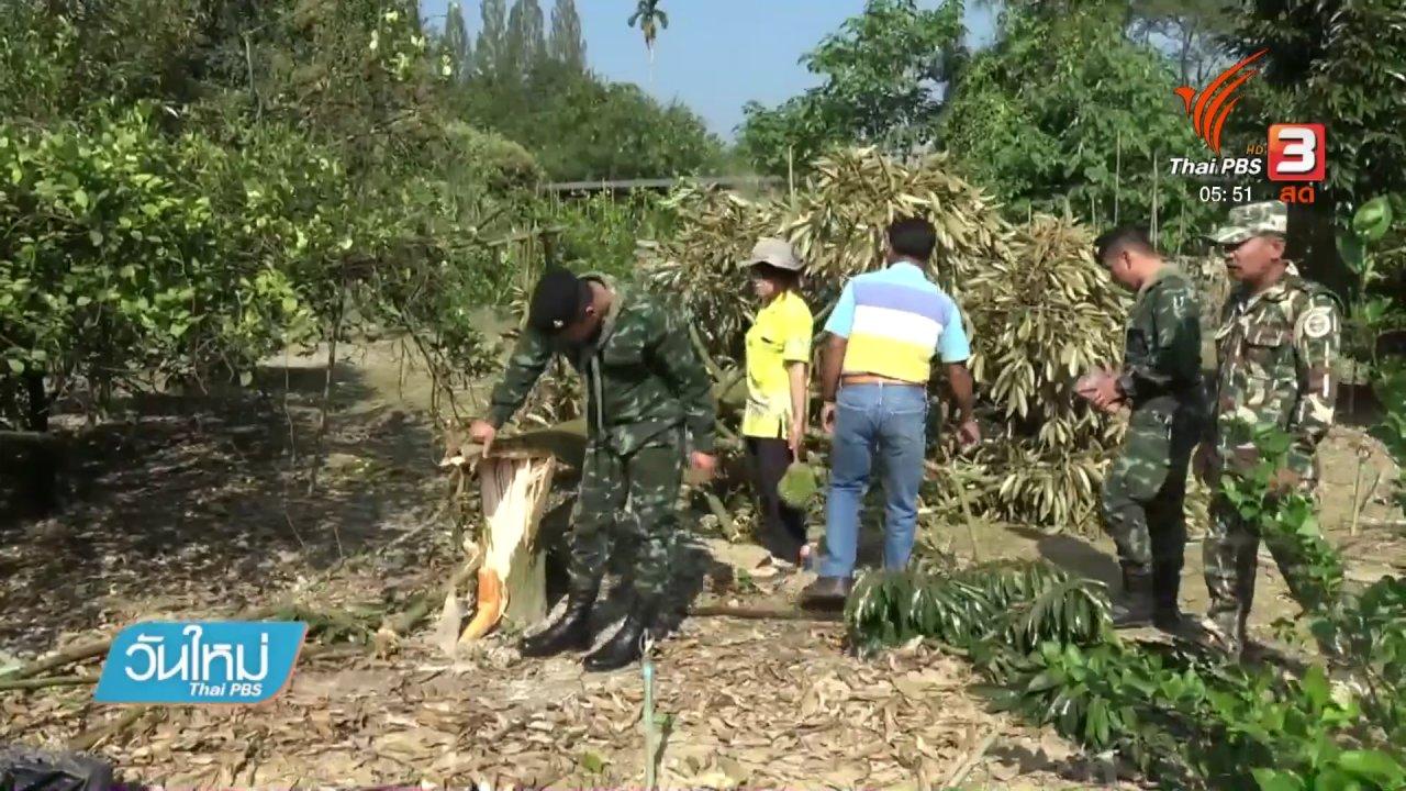 วันใหม่  ไทยพีบีเอส - ช้างป่าทำลายทุเรียนป่าละอู จ.ประจวบคีรีขันธ์