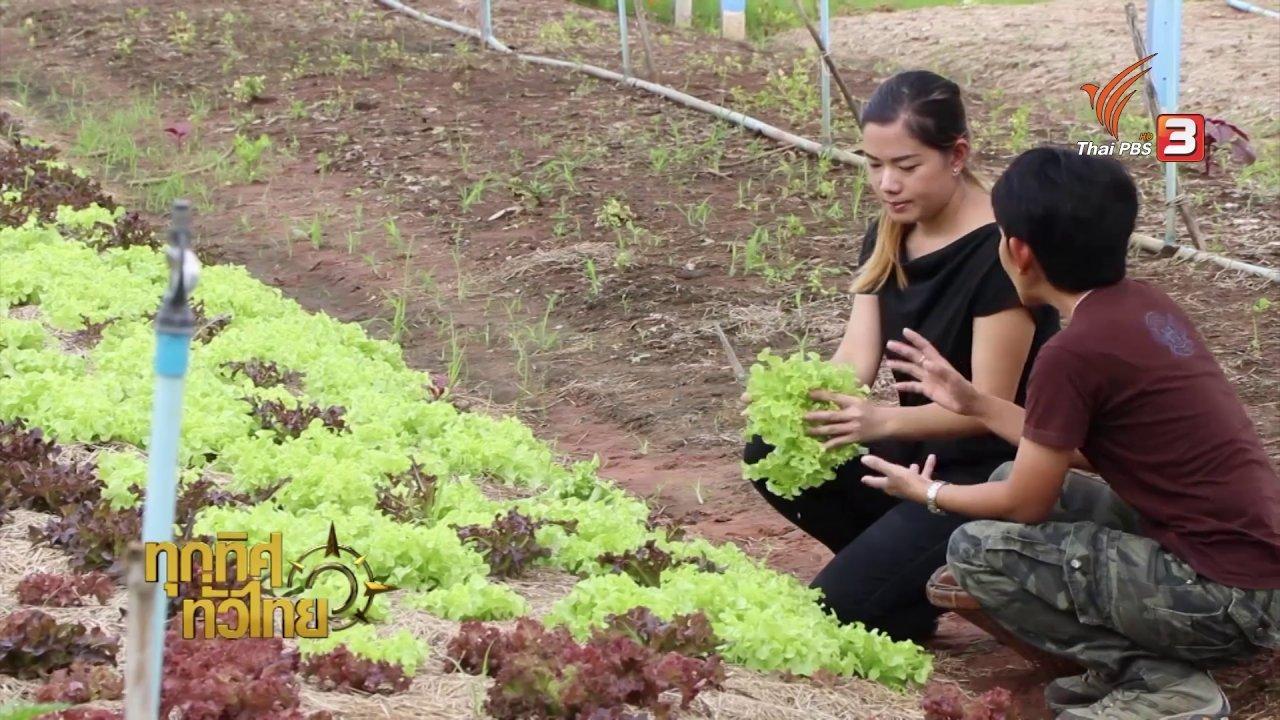 ทุกทิศทั่วไทย - วิถีทั่วไทย : แปลงเกษตรออร์แกนิก