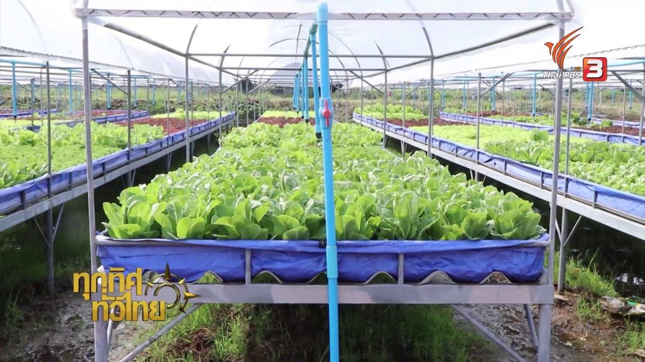 ทุกทิศทั่วไทย - แปลงปลูกผักยกพื้น จ.ราชบุรี
