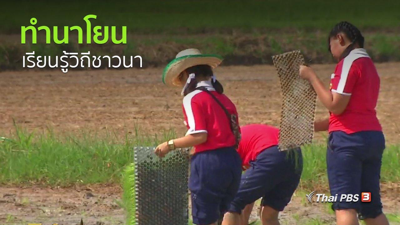 ทุกทิศทั่วไทย - วิถีทั่วไทย : เด็กขอนแก่นร่วมทำนาโยนเรียนรู้วิถีชาวนา