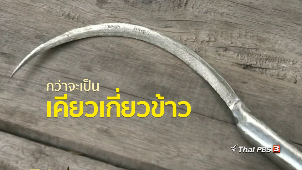 ทุกทิศทั่วไทย - อาชีพทั่วไทย : กว่าจะเป็นเคียวเกี่ยวข้าว