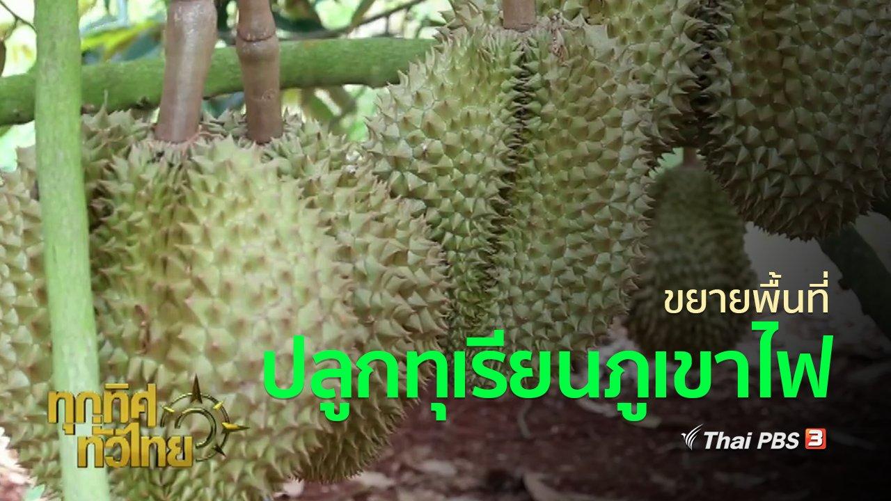 ทุกทิศทั่วไทย - ชุมชนทั่วไทย : ขยายพื้นที่ปลูกทุเรียนภูเขาไฟศรีสะเกษ