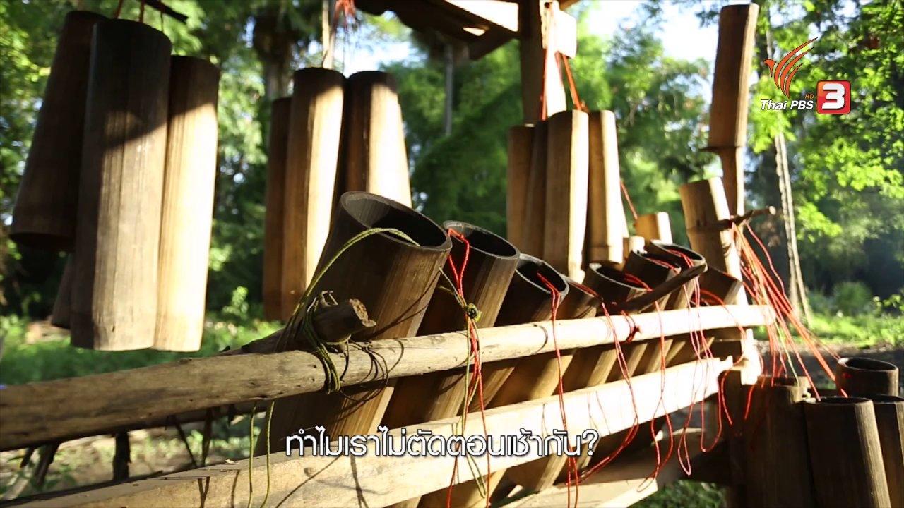 ทั่วถิ่นแดนไทย - เรียนรู้วิถีไทย : ตาลโตนด