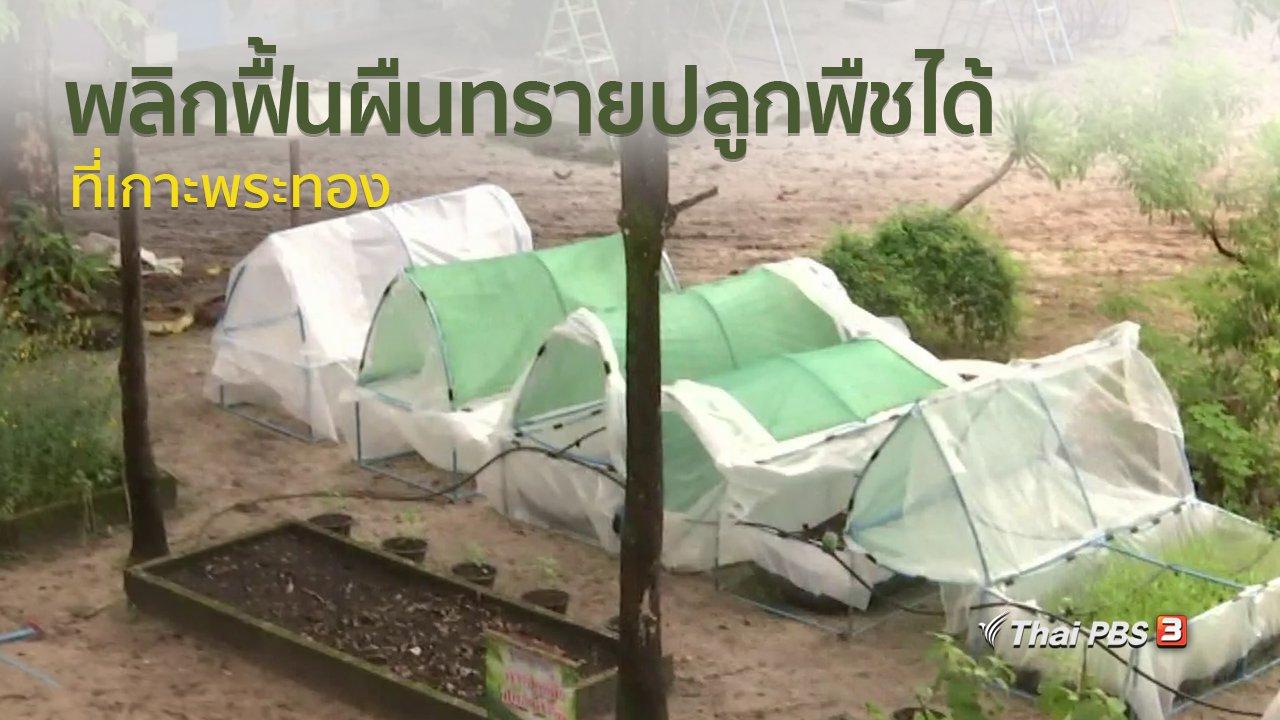 ทุกทิศทั่วไทย - วิถีทั่วไทย : พลิกฟื้นผืนทรายปลูกพืชได้ที่เกาะพระทอง