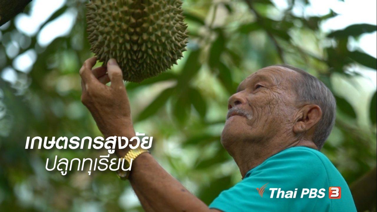 ลุยไม่รู้โรย - สูงวัยไทยแลนด์ : เกษตรกรสูงวัยปลูกทุเรียน