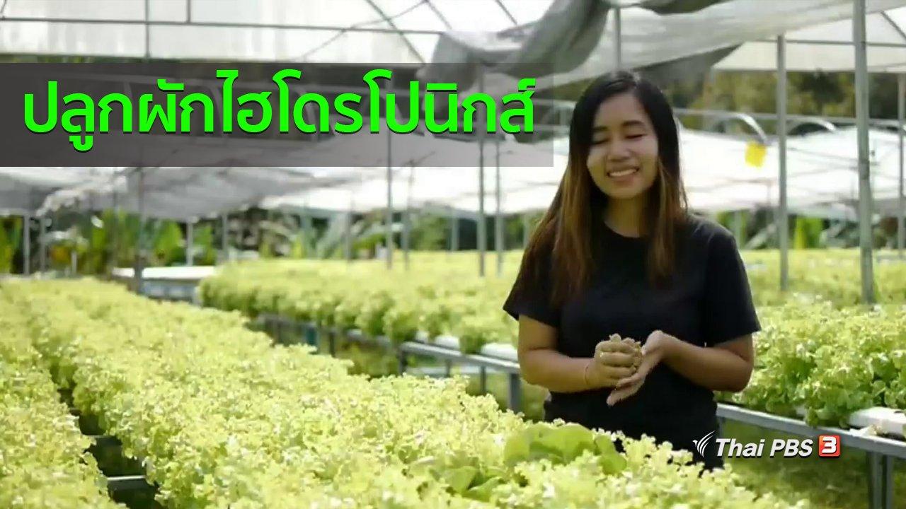 ทุกทิศทั่วไทย - อาชีพทั่วไทย : ครูสาวปลูกผักไฮโดรโปนิกส์ขาย