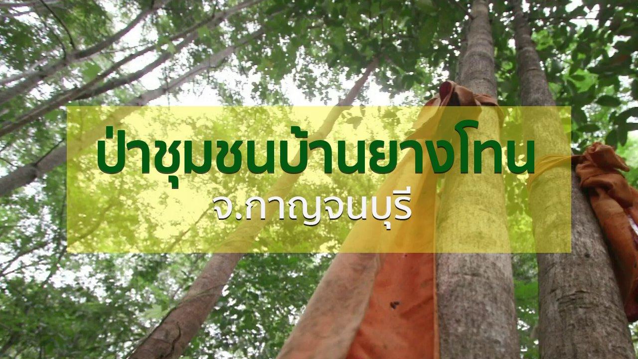 ทุกทิศทั่วไทย - วิถีทั่วไทย : เยือนป่าชุมชนบ้านยางโทน จ.กาญจนบุรี