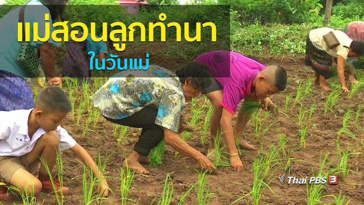 ทุกทิศทั่วไทย - วิถีทั่วไทย : แม่สอนลูกทำนาในวันแม่
