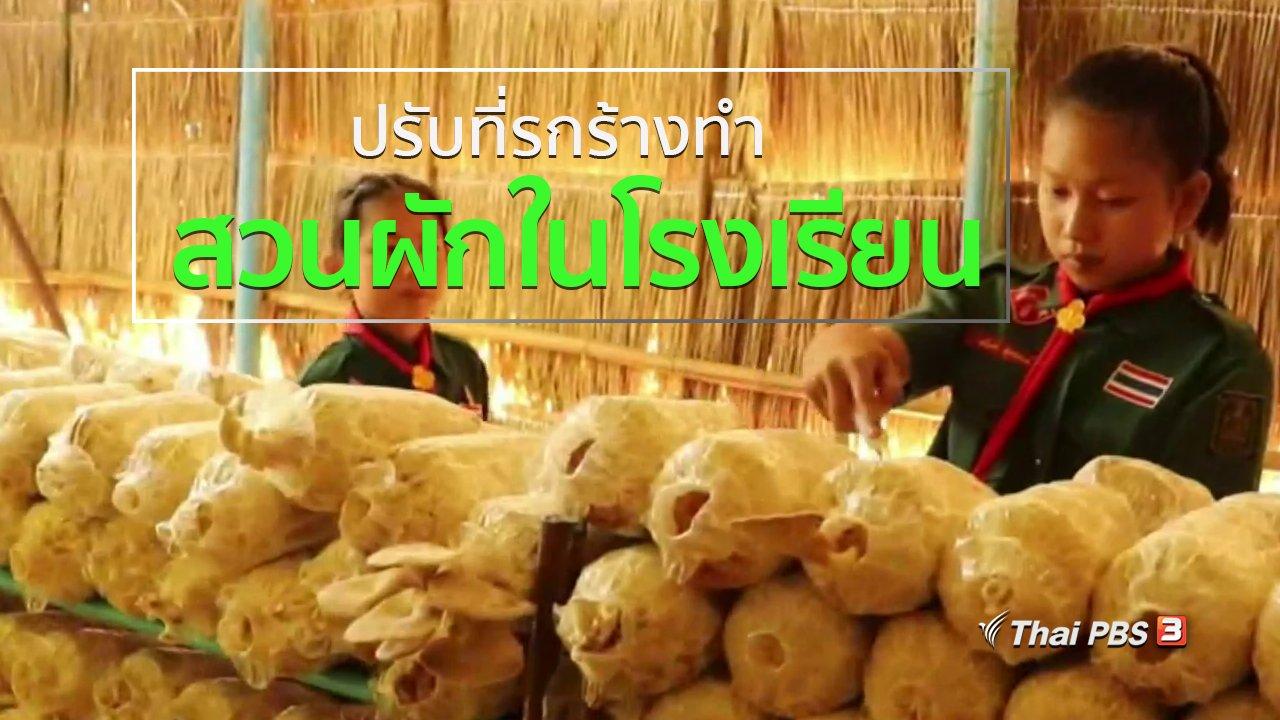 ทุกทิศทั่วไทย - ชุมชนทั่วไทย : ปรับที่รกร้างทำสวนผักในโรงเรียน