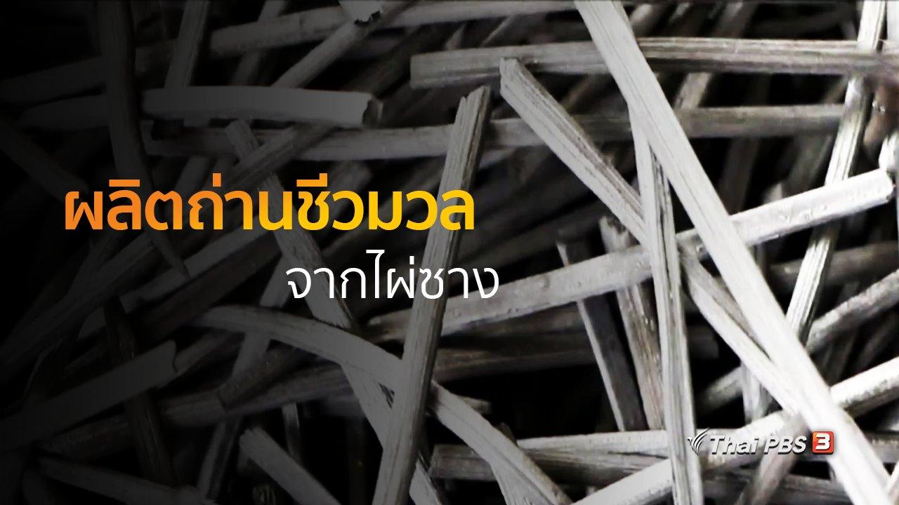ทุกทิศทั่วไทย - ชุมชนทั่วไทย : ผลิตถ่านชีวมวลจากไผ่ซาง