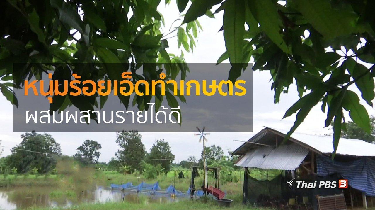 ทุกทิศทั่วไทย - อาชีพทั่วไทย : หนุ่มร้อยเอ็ดทำเกษตรผสมผสานรายได้ดี
