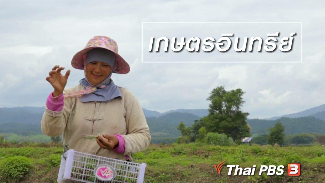 นารีกระจ่าง - ผู้หญิงผู้สร้าง : เกษตรอินทรีย์
