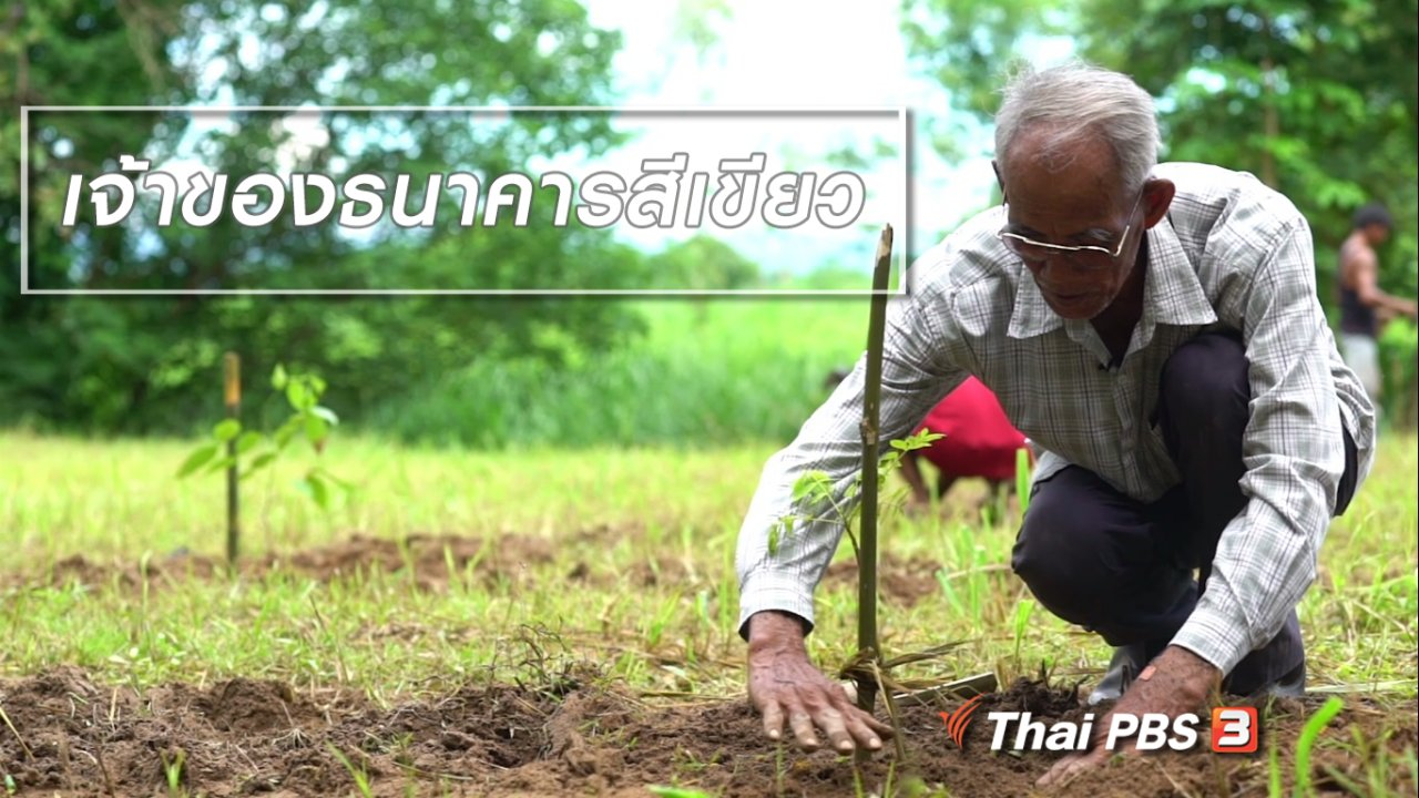 ลุยไม่รู้โรย สูงวัยดี๊ดี - สูงวัยไทยแลนด์ : เจ้าของธนาคารสีเขียว