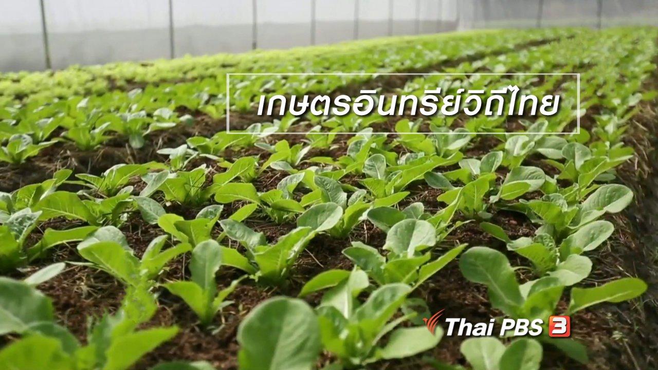 นารีกระจ่าง - ผู้หญิงผู้สร้าง : เกษตรอินทรีย์วิถีไทย