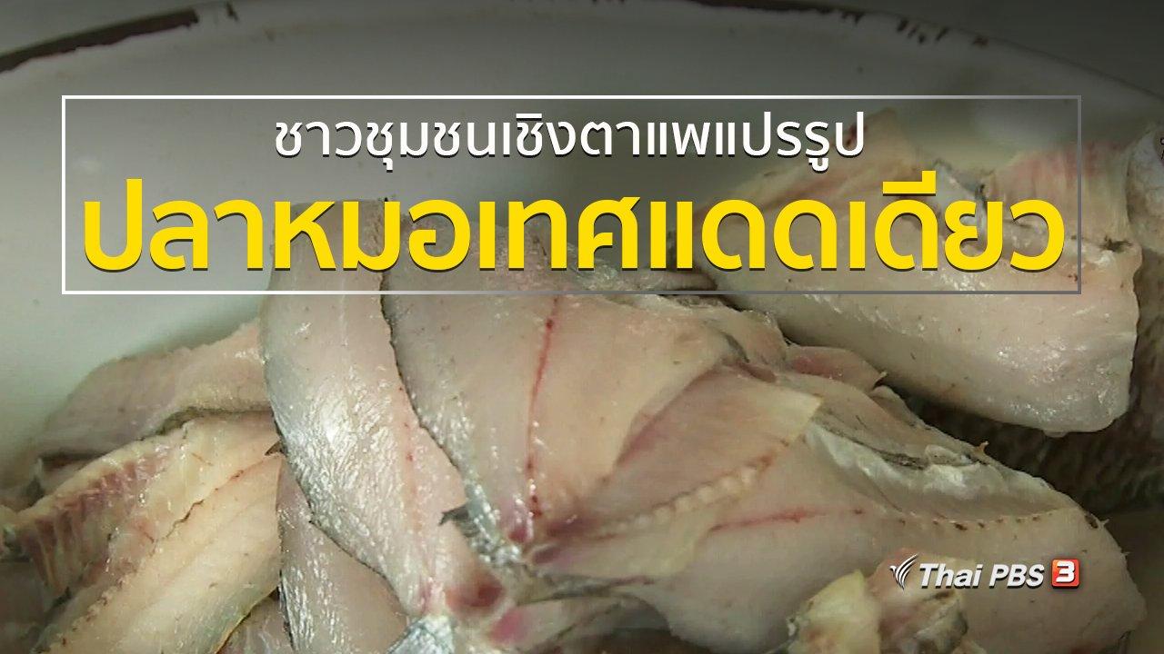 ทุกทิศทั่วไทย - อาชีพทั่วไทย : แปรรูปปลาหมอเทศแดดเดียว