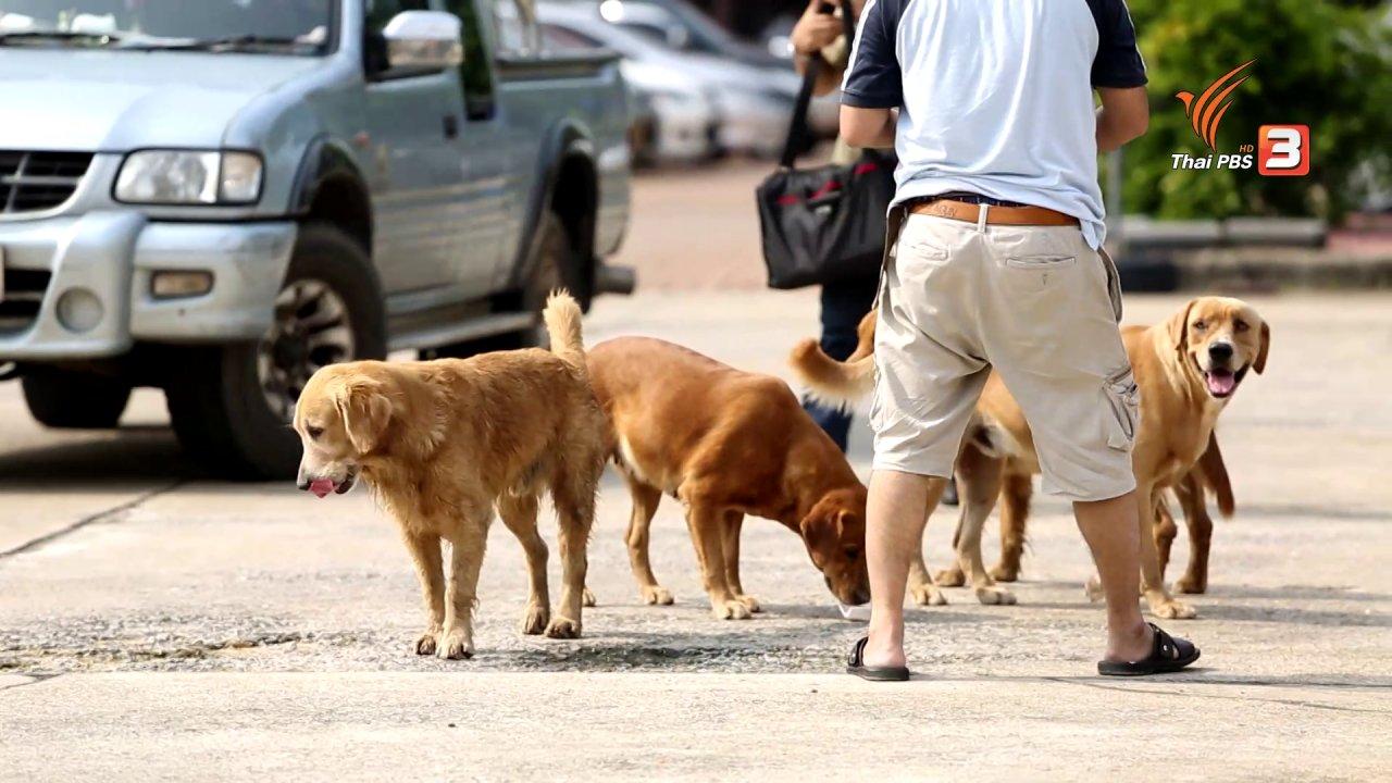 คนสู้โรค - รู้สู้โรค : เฝ้าระวังโรคพิษสุนัขบ้า