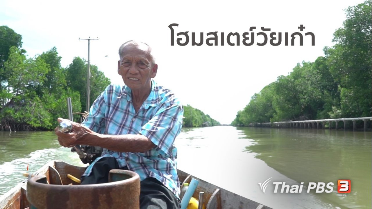 ลุยไม่รู้โรย สูงวัยดี๊ดี - สูงวัยไทยแลนด์ : โฮมสเตย์วัยเก๋า