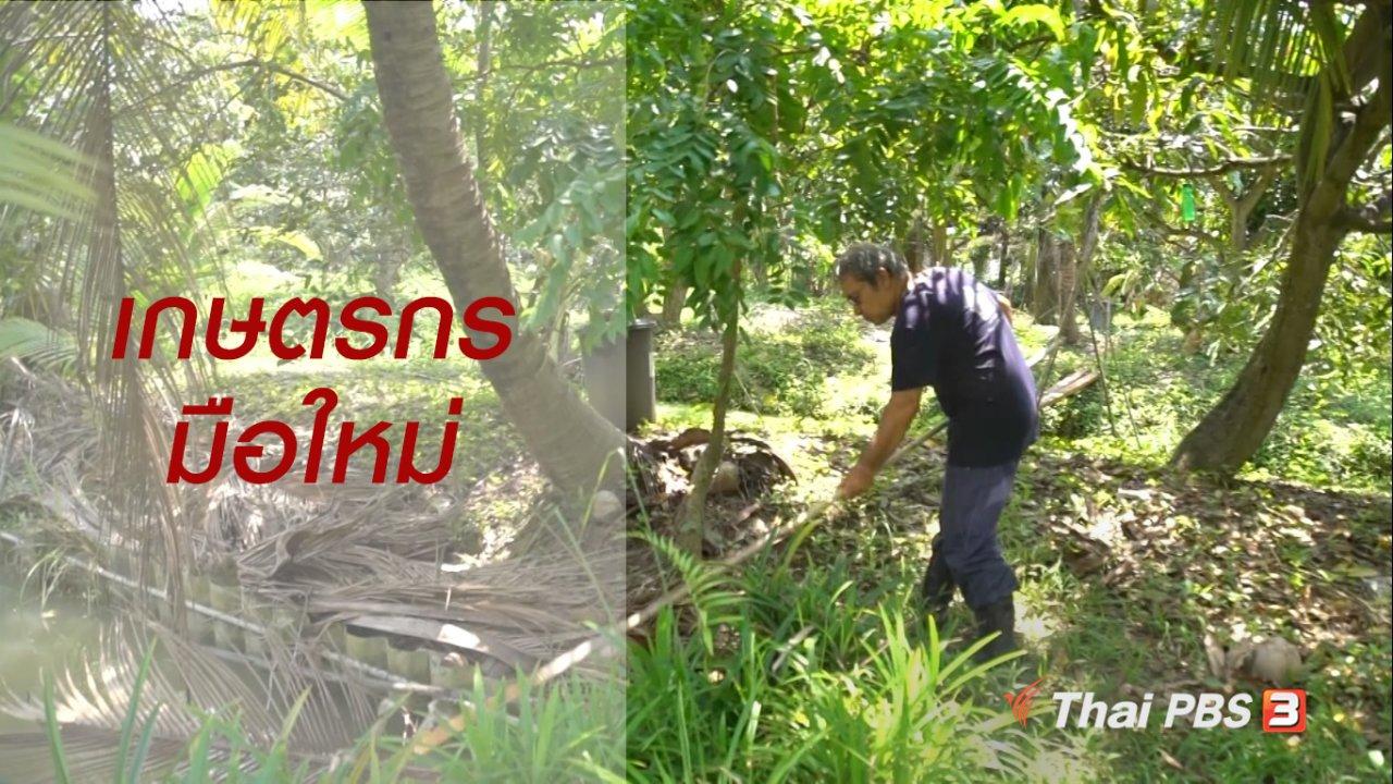 ลุยไม่รู้โรย สูงวัยดี๊ดี - สูงวัยไทยแลนด์ : เกษตรกรมือใหม่