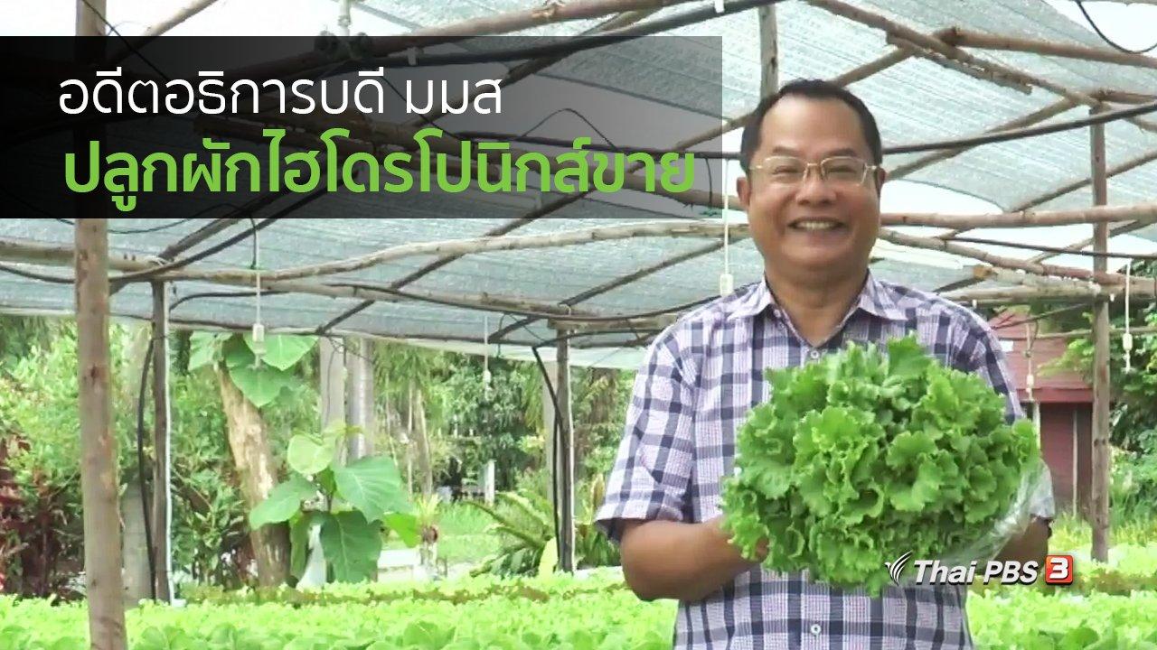 ทุกทิศทั่วไทย - อาชีพทั่วไทย : อดีตอธิการบดี มมส ปลูกผักไฮโดรโปนิกส์ขาย