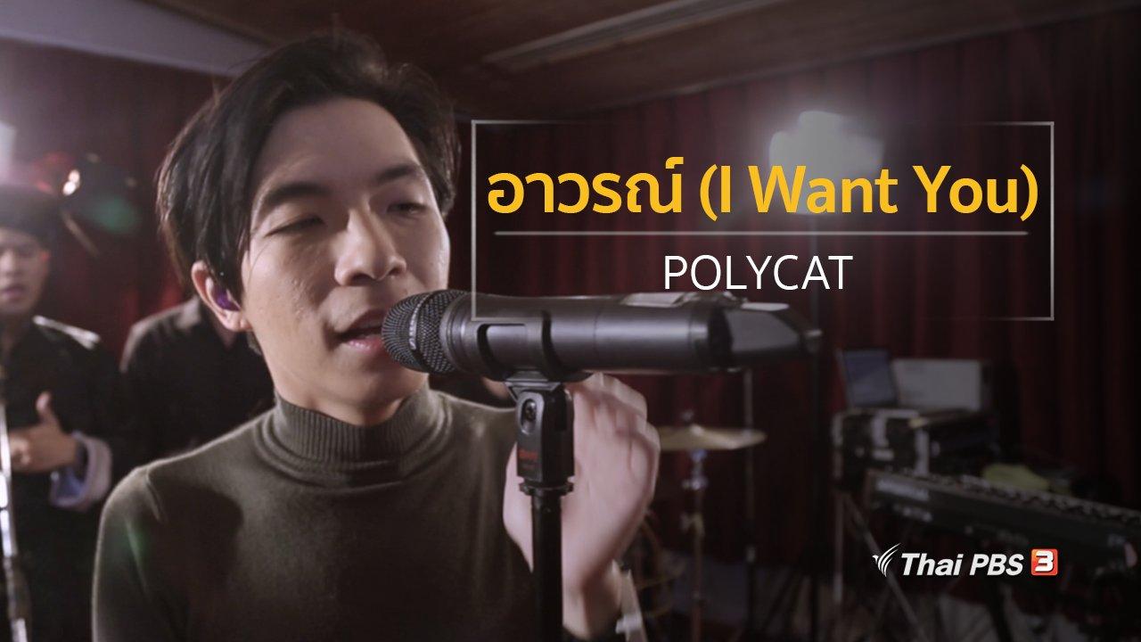 นักผจญเพลง - อาวรณ์ (I Want You) – POLYCAT