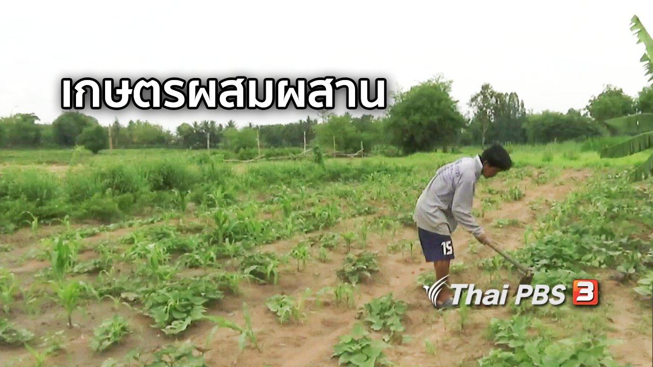 จับตาสถานการณ์ - ตะลุยทั่วไทย : เกษตรผสมผสาน