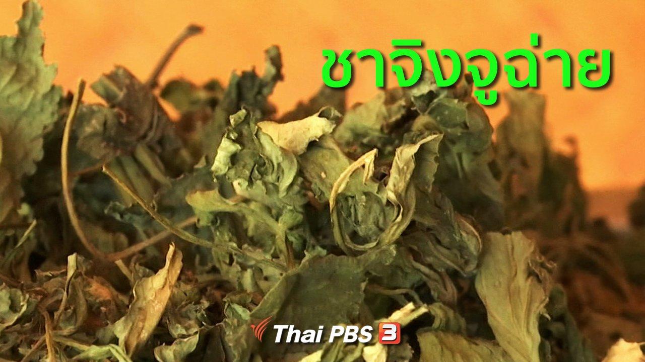 ทุกทิศทั่วไทย - อาชีพทั่วไทย : ชาจิงจูฉ่าย